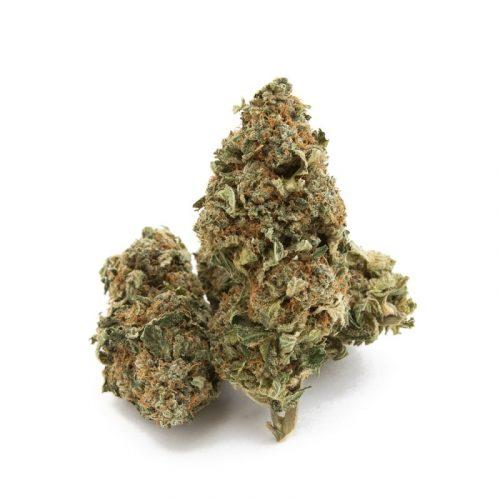 Cannatonic strain near me, Buy cannatonic online, Cannatonic weed for sale
