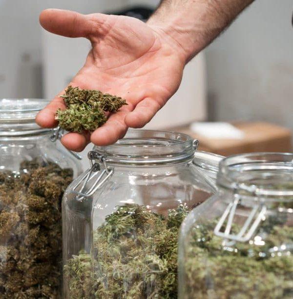 Cannabis Delivery Atlanta